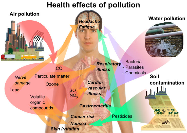 Depression-Memory-Problems-Air-Pollution-Connected-2