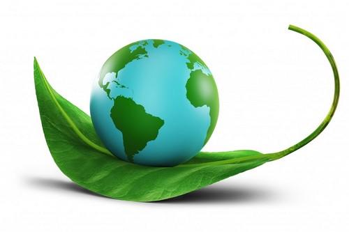 environmental-conservation-concept-1024x682 | محیط زیست | تخلیه چاه تهران | لوله بازکنی تهران