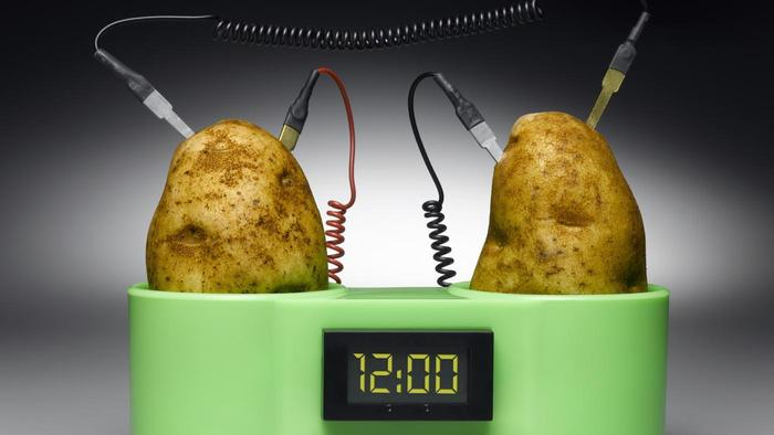 Electricity produced from potatoes