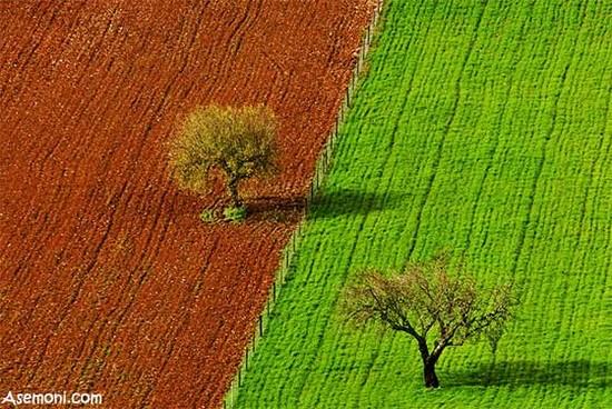 environment - محیط زیست (2)