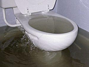 بالا زدن آب توالت